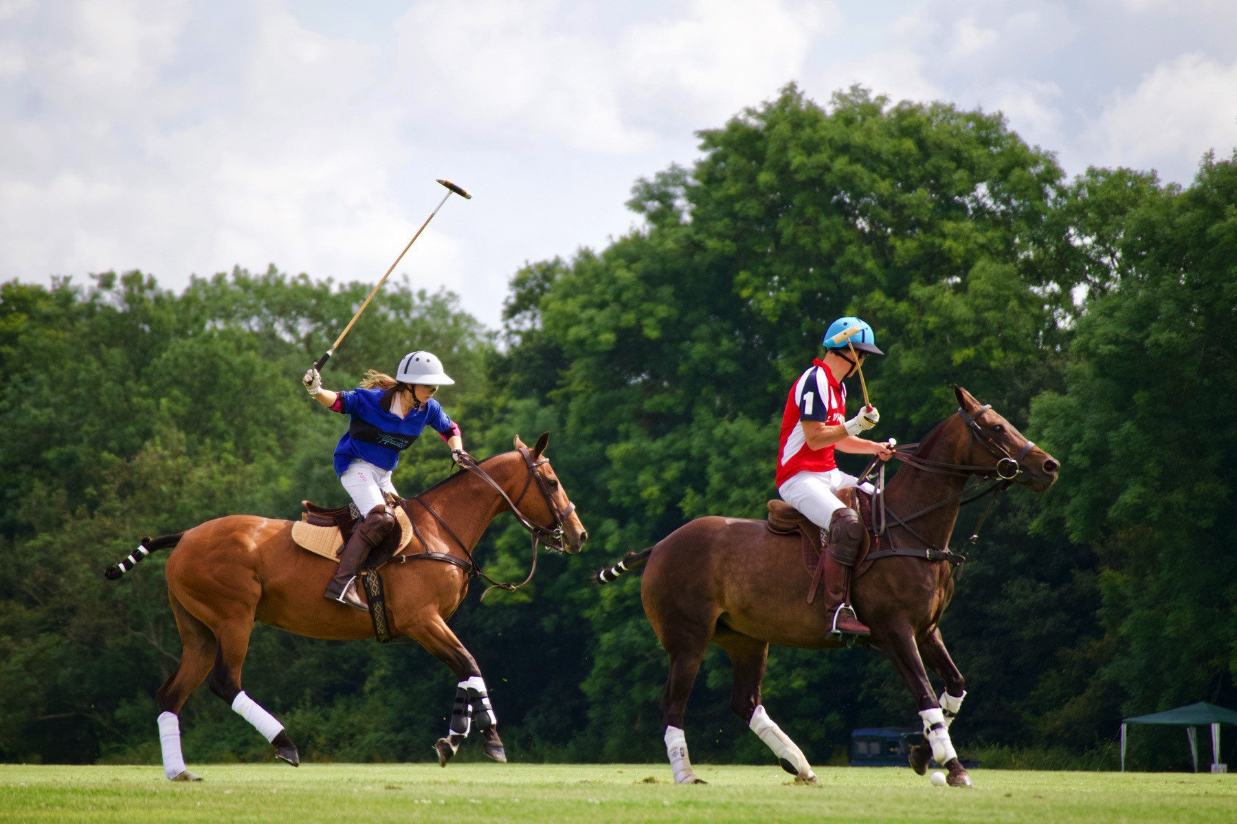 A polo match in progress.