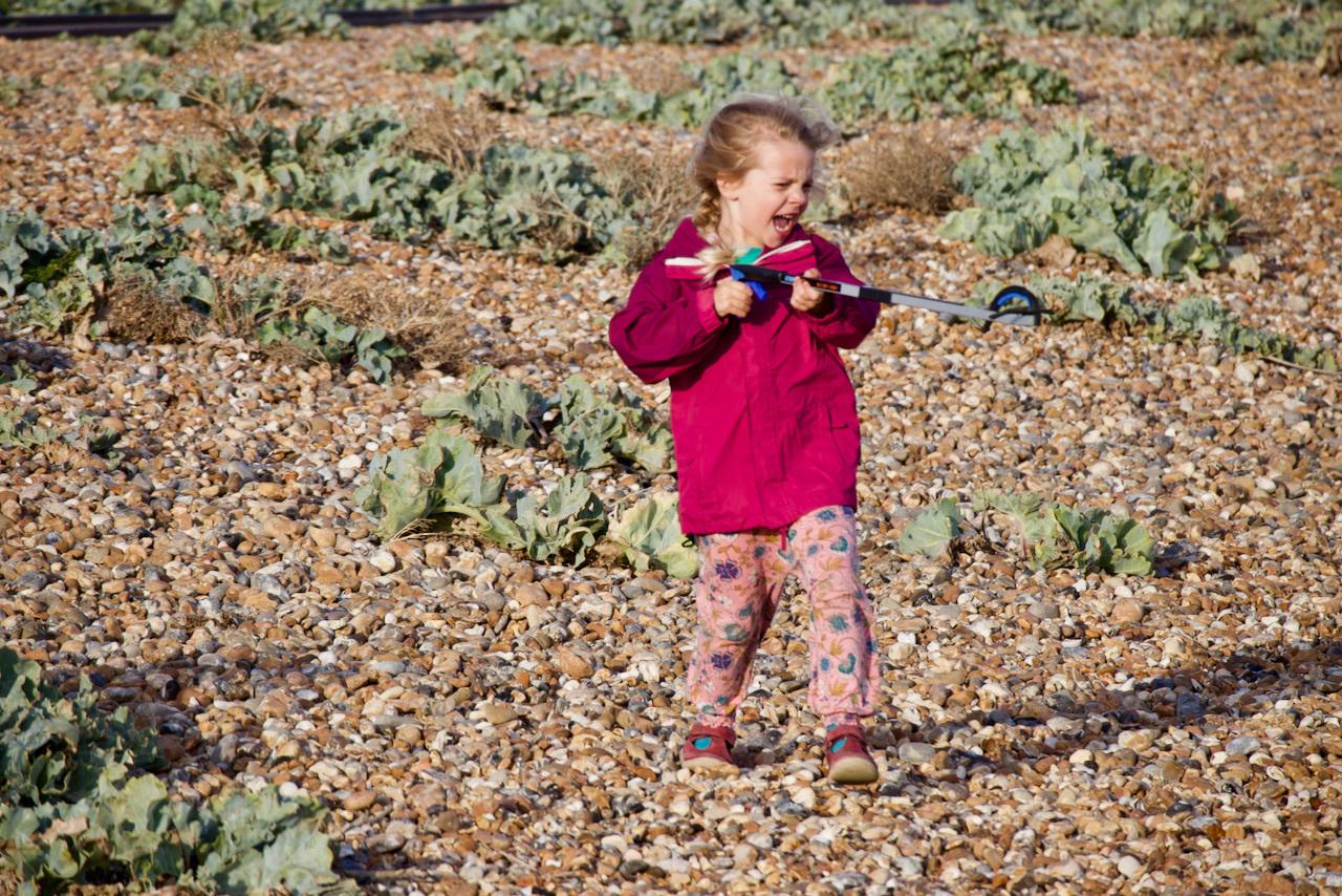 My daughter and a litter-picker on Shoreham Beach.