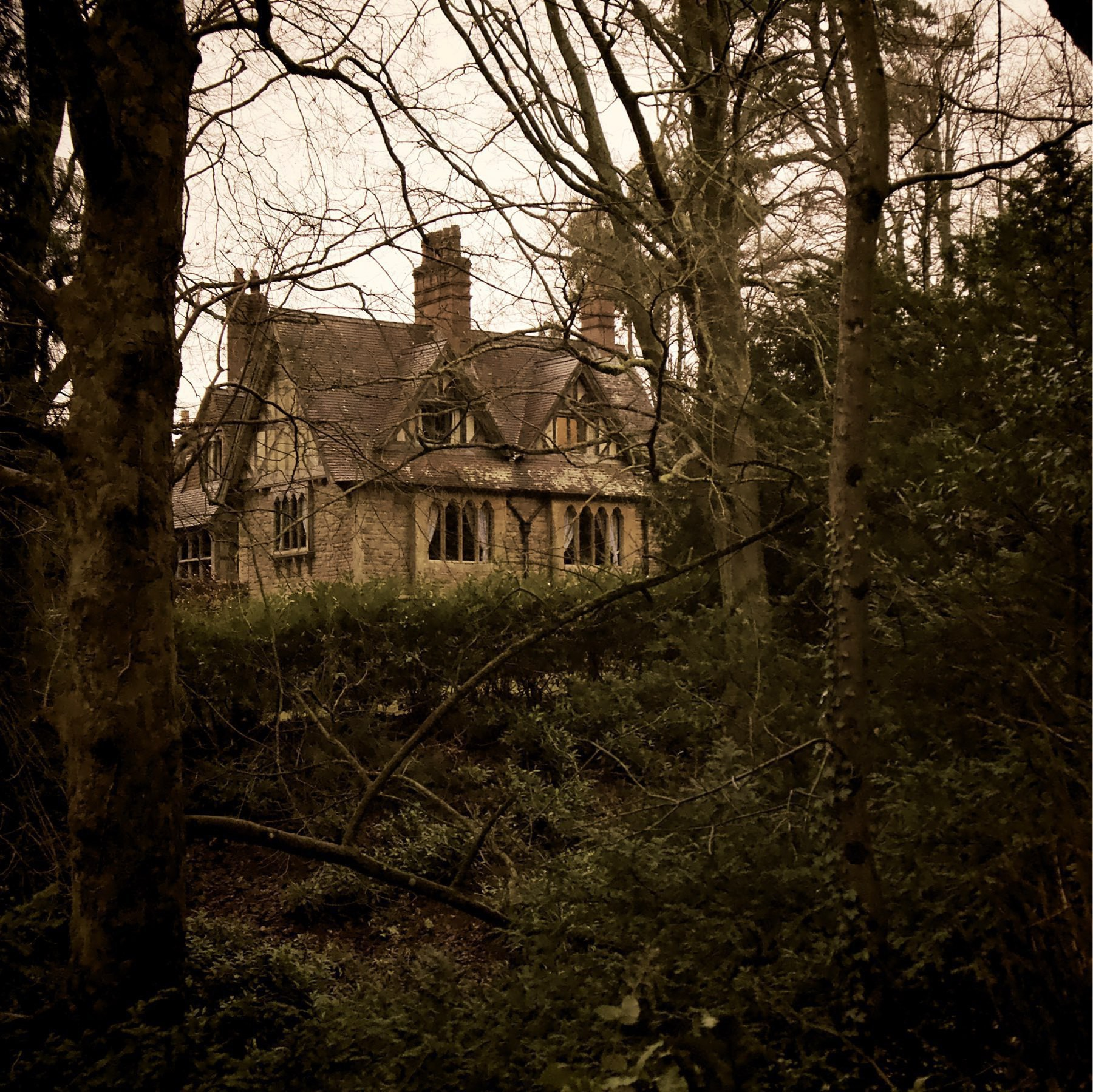 A house in the woods on the Tyntsfield estate