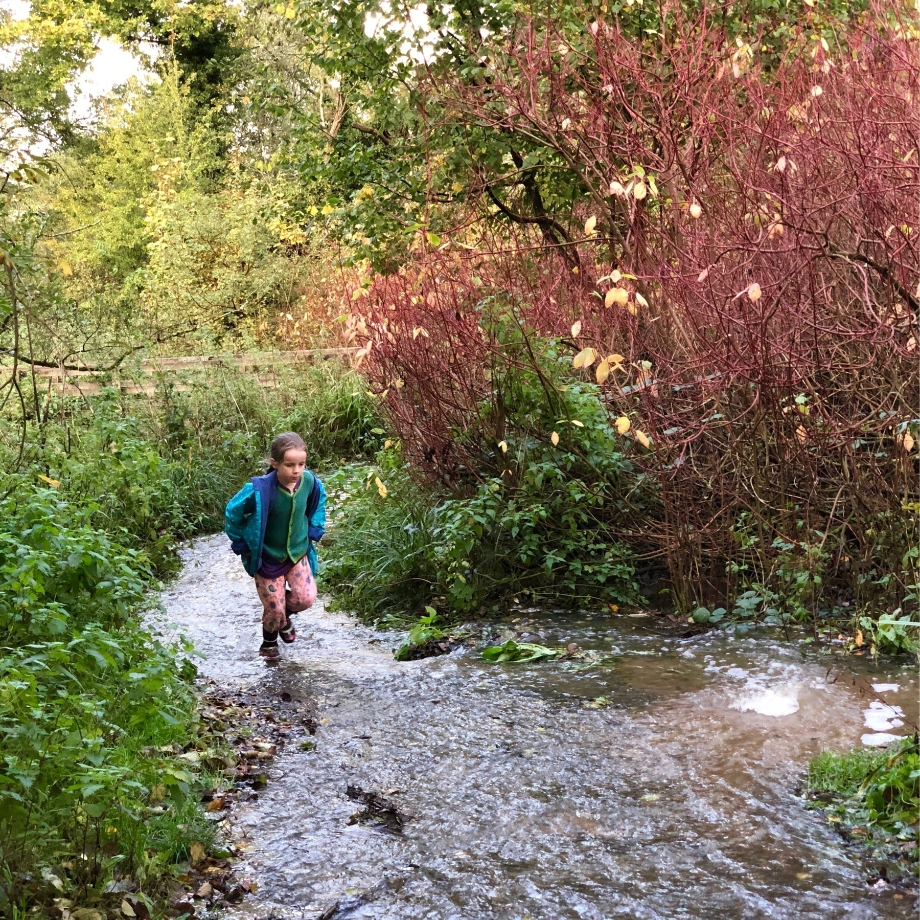 A girl running through a flooded path at Woods Mill.