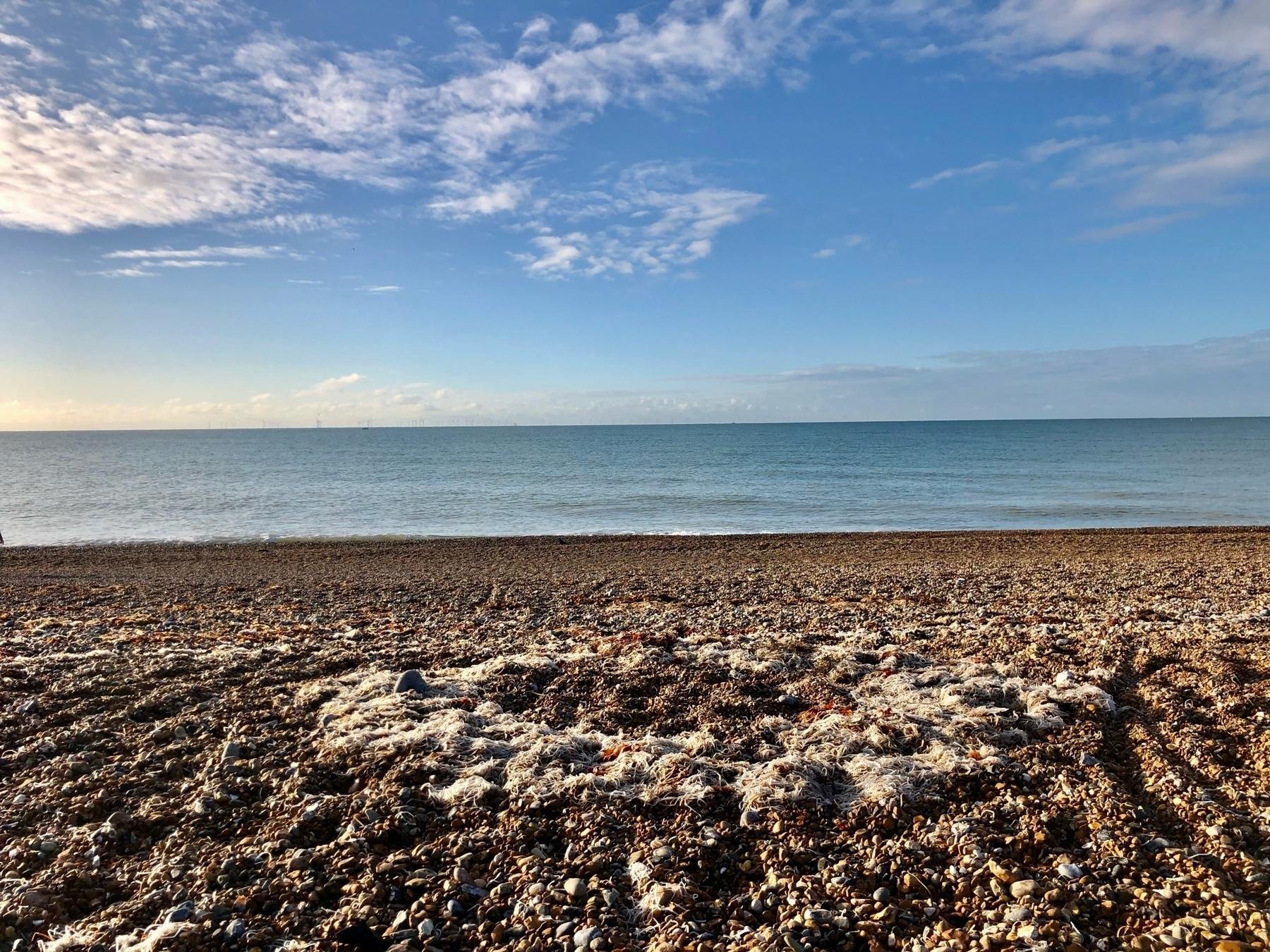 Shoreham Beach looking towards the sea.