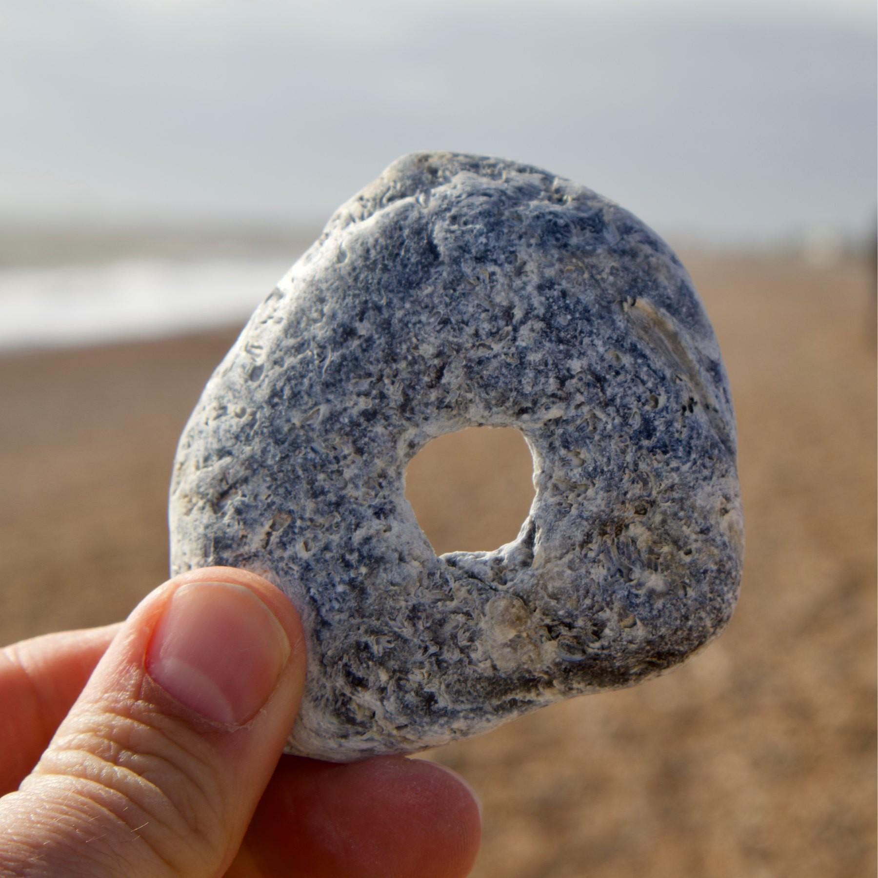 Another hagstone found on Shoreham Beach